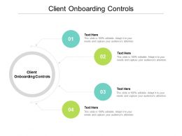 Client Onboarding Controls Ppt Powerpoint Presentation Inspiration Graphics Cpb