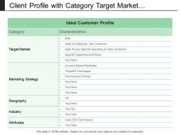 Client Profile With Category Target Market Strategy And Industry