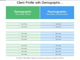 Client Profile With Demographic And Psychographic Segmentation