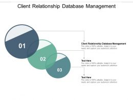 Client Relationship Database Management Ppt Powerpoint Presentation Summary Master Slide Cpb