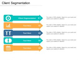 Client Segmentation Ppt Powerpoint Presentation Gallery Brochure Cpb