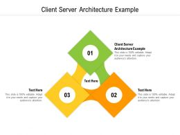 Client Server Architecture Example Ppt Powerpoint Presentation Icon Portrait Cpb
