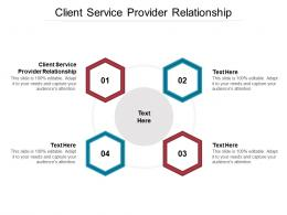 Client Service Provider Relationship Ppt Powerpoint Presentation Summary Sample Cpb