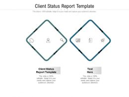 Client Status Report Template Ppt Powerpoint Presentation Portfolio Show Cpb