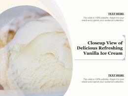 Closeup View Of Delicious Refreshing Vanilla Ice Cream
