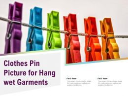 Clothes Pin Picture For Hang Wet Garments