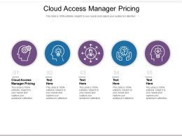 Cloud Access Manager Pricing Ppt Powerpoint Presentation Model Design Templates Cpb