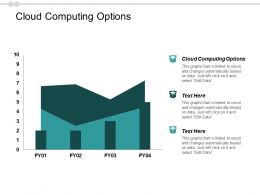 Cloud Computing Options Ppt Powerpoint Presentation Infographics Objects Cpb