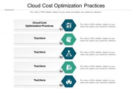 Cloud Cost Optimization Practices Ppt Powerpoint Presentation Professional Samples Cpb