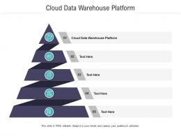 Cloud Data Warehouse Platform Ppt Powerpoint Presentation Ideas Picture Cpb