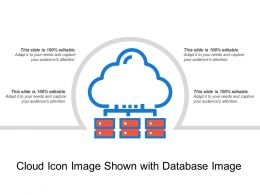 Cloud Icon Image Shown With Database Image