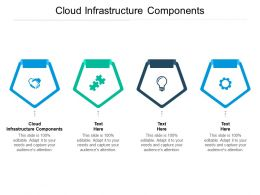 Cloud Infrastructure Components Ppt Powerpoint Presentation Ideas Infographics Cpb