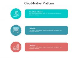 Cloud Native Platform Ppt Powerpoint Presentation Professional Graphics Cpb