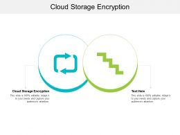 Cloud Storage Encryption Ppt Powerpoint Presentation Pictures Influencers Cpb