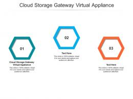 Cloud Storage Gateway Virtual Appliance Ppt Powerpoint Presentation Ideas Brochure Cpb