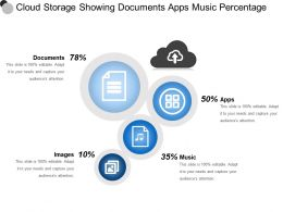 Cloud Storage Showing Documents Apps Music Percentage