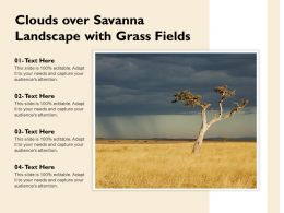 Clouds Over Savanna Landscape With Grass Fields