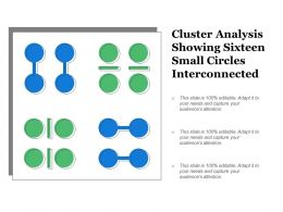 Cluster Analysis Showing Sixteen Small Circles Interconnected