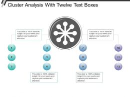 Cluster Analysis With Twelve Text Boxes