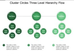 Cluster Circles Three Level Hierarchy Flow