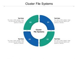 Cluster File Systems Ppt Powerpoint Presentation Summary Templates Cpb