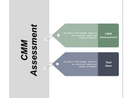 Cmm Assessment Ppt Powerpoint Presentation Infographic Template Styles Cpb