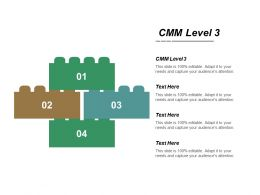 Cmm Level 3 Ppt Powerpoint Presentation File Infographic Template Cpb