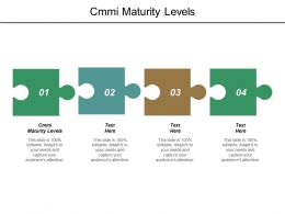 Cmmi Maturity Levels Ppt Powerpoint Presentation Infographics Example Cpb