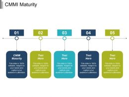 Cmmi Maturity Ppt Powerpoint Presentation Infographic Template Infographics Cpb
