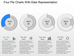 cn Four Pie Charts With Data Representation Powerpoint Template