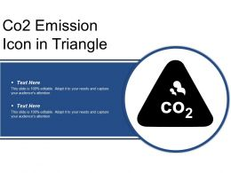 Co2 Emission Icon In Triangle