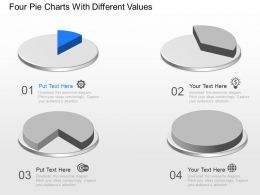 co_four_pie_charts_with_different_values_powerpoint_template_Slide01