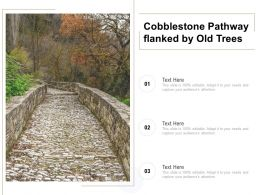 Cobblestone Pathway Flanked By Old Trees