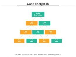 Code Encryption Ppt Powerpoint Presentation Portfolio Structure Cpb