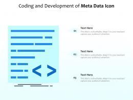Coding And Development Of Meta Data Icon