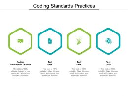 Coding Standards Practices Ppt Powerpoint Presentation Styles Example Cpb