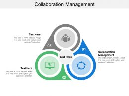 Collaboration Management Ppt Powerpoint Presentation Outline Styles Cpb