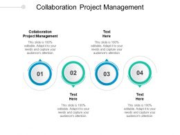 Collaboration Project Management Ppt Powerpoint Presentation Infographics Designs Cpb