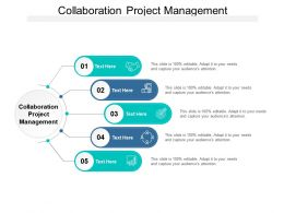 Collaboration Project Management Ppt Powerpoint Presentation Slides Brochure Cpb