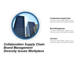 Collaboration Supply Chain Brand Management Diversity Issues Workplace Cpb