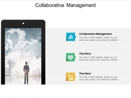 Collaborative Management Ppt Powerpoint Presentation Professional Samples Cpb