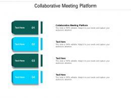Collaborative Meeting Platform Ppt Powerpoint Presentation Gallery Rules Cpb