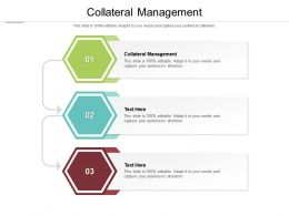 Collateral Management Ppt Powerpoint Presentation Model Demonstration Cpb