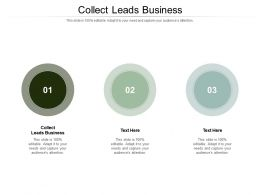 Collect Leads Business Ppt Powerpoint Presentation Background Images Cpb