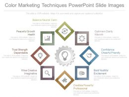 Color Marketing Techniques Powerpoint Slide Images