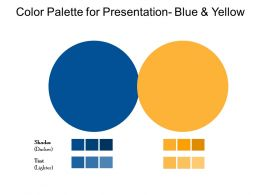Color Palette For Presentation Blue And Yellow
