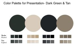 Color Palette For Presentation Dark Green And Tan