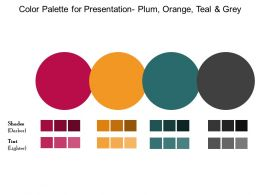 Color Palette For Presentation Plum Orange Teal And Grey