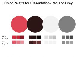 Color Palette For Presentation Red And Grey