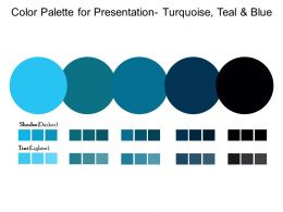 Color Palette For Presentation Turquoise Teal And Blue